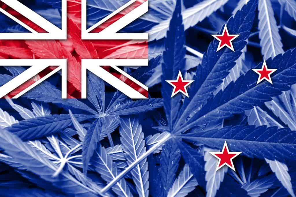 Is CBD Oil Legal in New Zealand