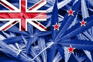 Is CBD Oil Legal in New Zealand